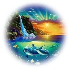 whalesdolphins