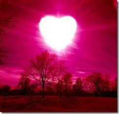 Vc consegue amar como a natureza? Sem esperar recompensas?...