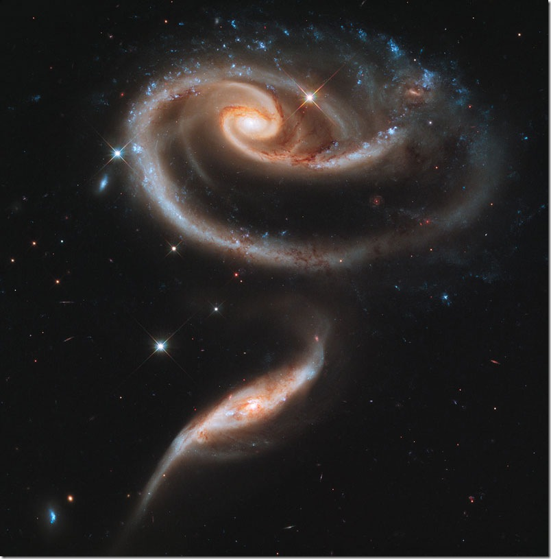 rose-made-of-galaxies