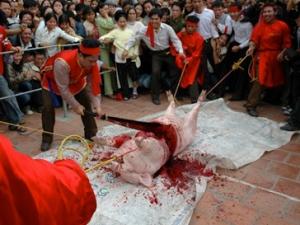 ghadimai festival sacrifice